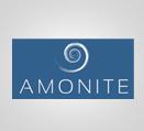 amoniteweb